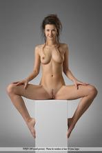 The Art Of Body 08