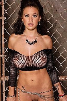 Tess Taylor Black Mesh Top